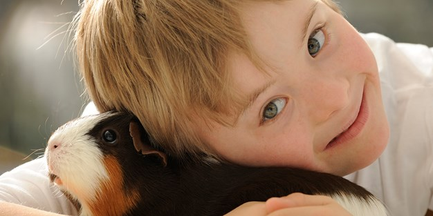 A young boy with downs syndrome hugging a guinea pig. Photo