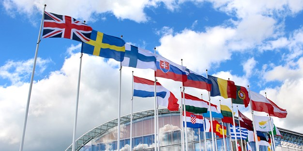 EU member states flags. Photo