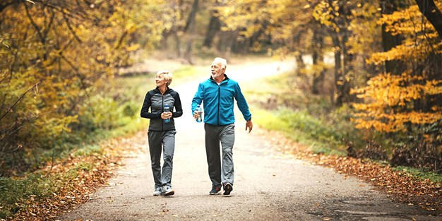 Elderly couple walking in a park. Photo