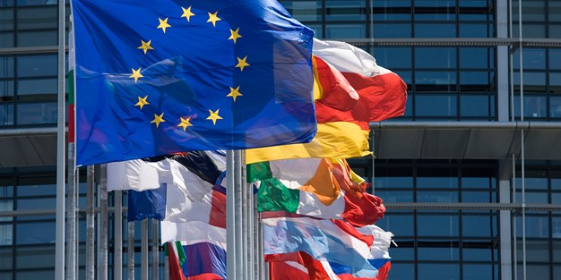 EU and flags of EU member states. Photograph