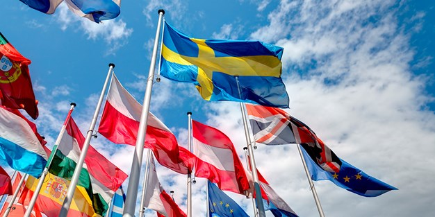 Flags of member states. Photo